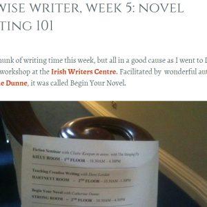 unwise writer